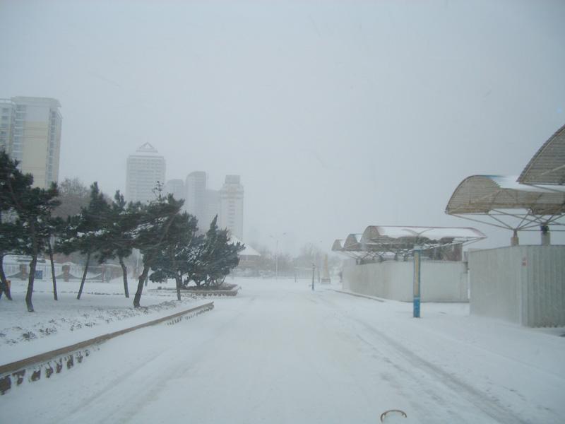 2月17日海边雪景 照片图片