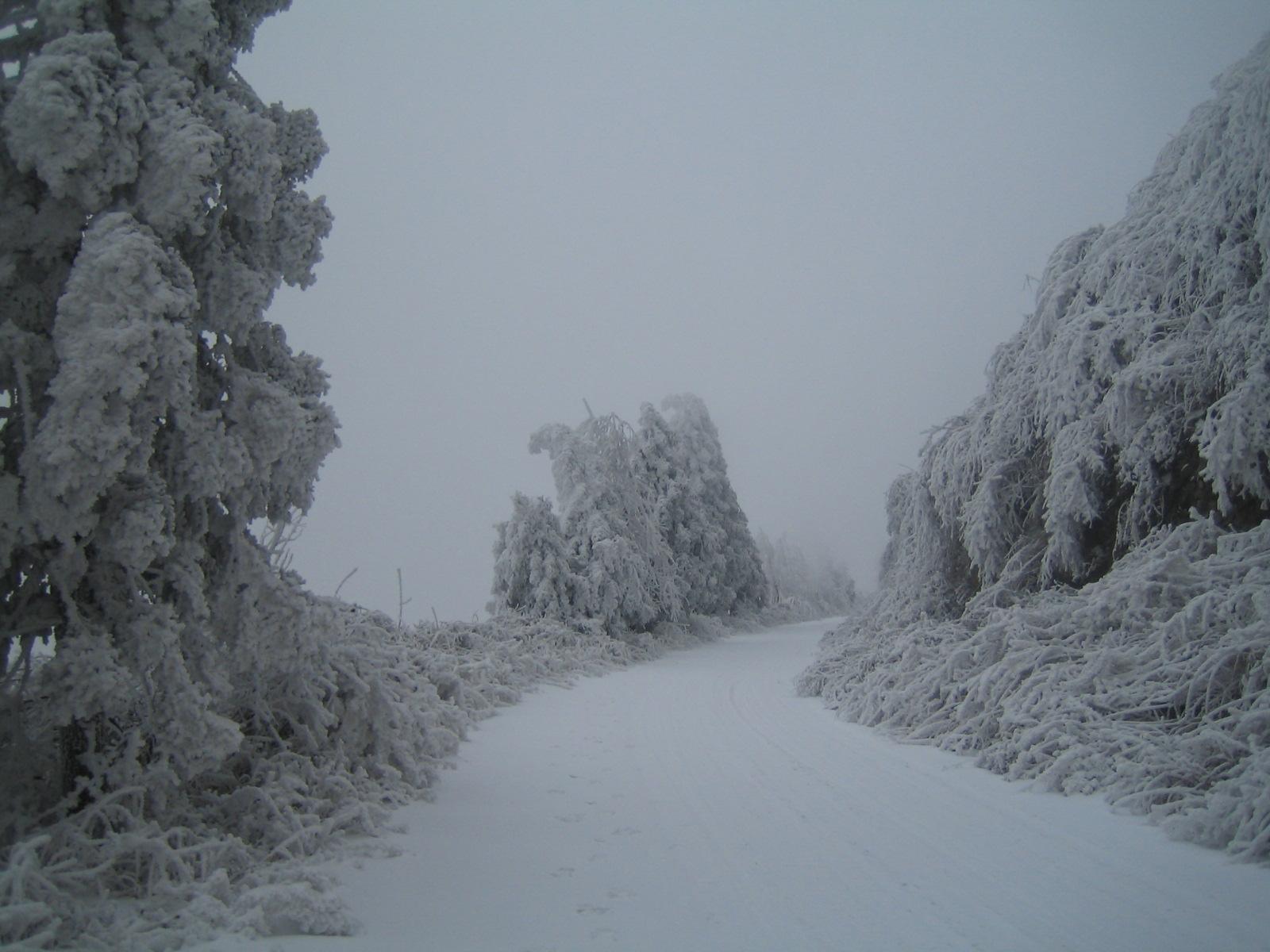湖北恩施鹤峰雪景