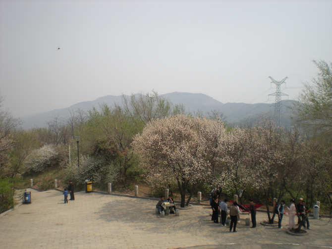 去东山风景区,登了美塔