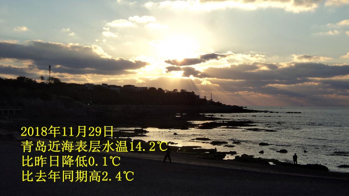 69 2018年11月29日青岛近海潮汐预报  13 #    楼主| 发表于 2018
